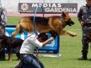1er Festival Atlético Ibarra 10k