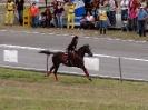 Cacería del Zorro 2010 XXXVIII Edición
