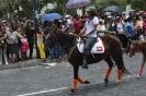 Cacería del Zorro 2012 (desfile)
